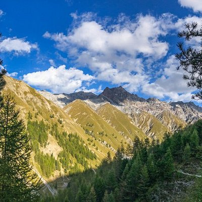 Die Val Trupchun ist das meistbesuchteste Tal des Nationalparks. Es ist bekannt für seine reiche Tier- und Pflanzenwelt.