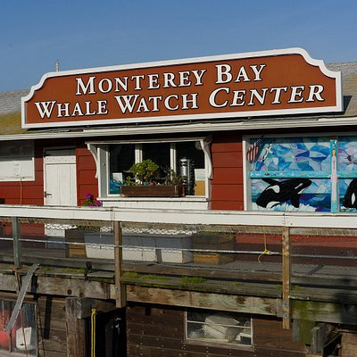 MONTEREY BAY WHALE WATCH CENTER