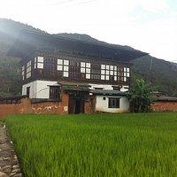 Tshering Farm House