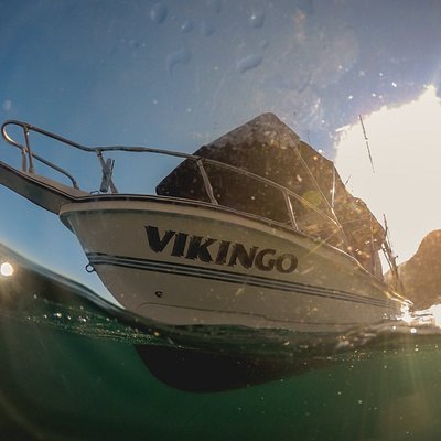 The Vikingo sport fishing boat, Mako class ship built to catch the best fish on the bay!