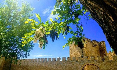Atardecer en el Castillo 😍