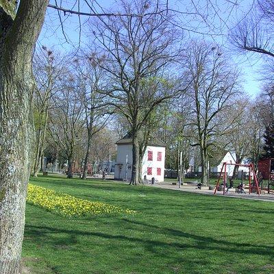 Im Rheinpark.