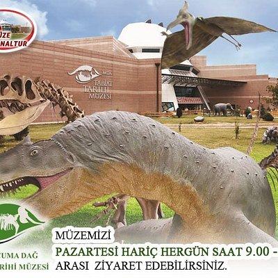 ŞEHİT CUMA DAĞ NATURAL HİSTORY MUSEUM