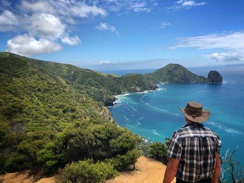 The view from Coromandel Coastal Walkway on our Coastal Charm tour.