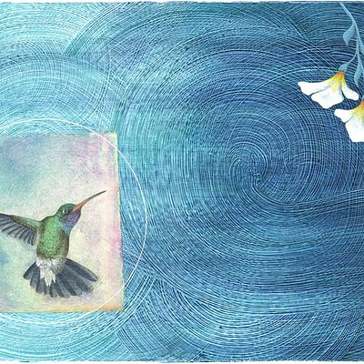 Hummingbird of the Healing Heart