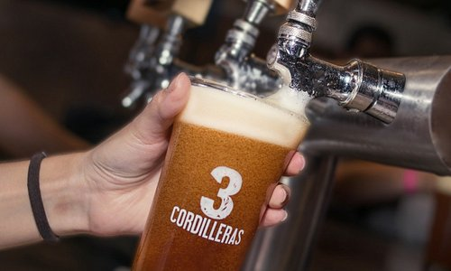 Disfruta de nuestras 6 cervezas, cada una con características especiales, para tomarte la vida con pasión.