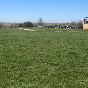 One view of this massive dog park, near parking lot.