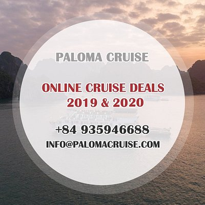 Paloma Cruise Online Deals 2019 & 2020