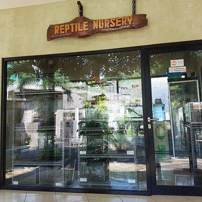 Taman Reptil dan Museum Komodo