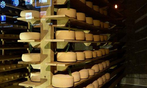 Cheese Cellar.
