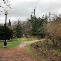 spring @York Mills Valley Park
