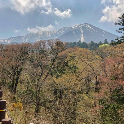 大山寺周辺の森は少しずつ新緑の世界に変わりつつあります。心地よい風が吹く季節を迎えます。 ぜひ大山に遊びにいらして下さいね。 http://tourismdaisen.com/info/kanko/sinryoku2019/