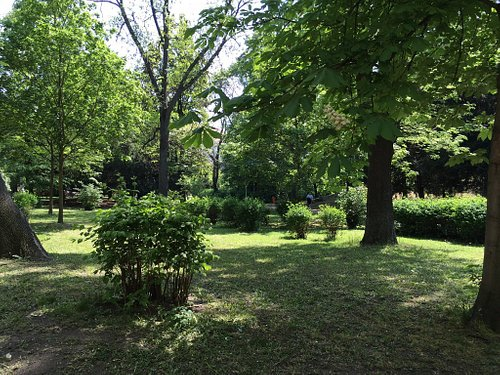 Psychiatrická Zahrada