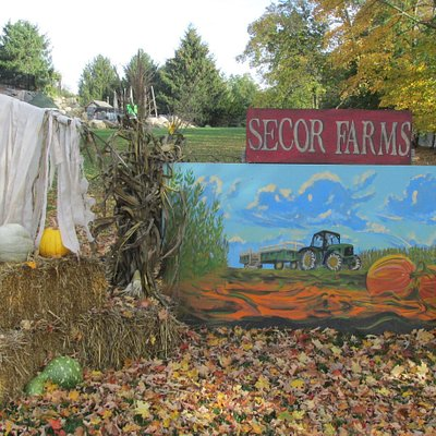 Decorated for the Fall Harvest