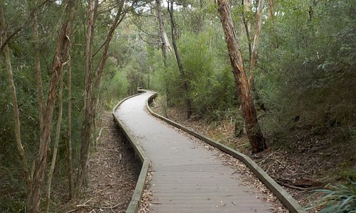 boardwalk towards the Southern end of the park