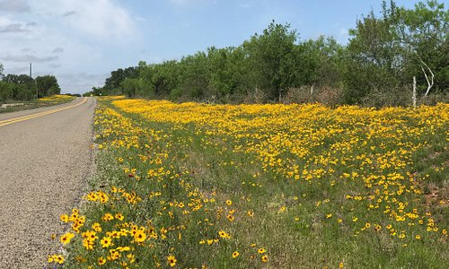 Beautiful Hill Country drive!