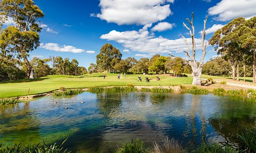 Our picturesque 4th Hole