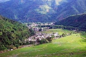 #ziro #zirovalley #arunachalpradesh #india