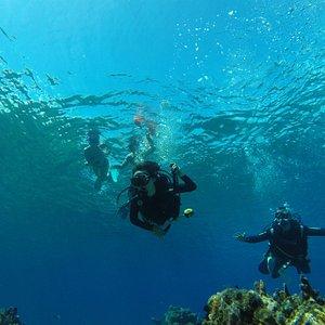 Foto de cliente en una inmersión en Puerto Escondido, Mayabeque, Cuba. Fotos tomadas por Cuba Blue Diving