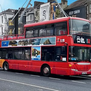 Our new fleet of open top buses