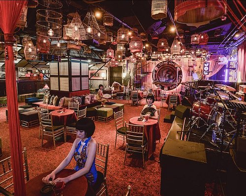 Suzie Room - Live Band, Cabaret Show, Musical Show, DJ