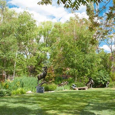 The sculpture garden in the summer