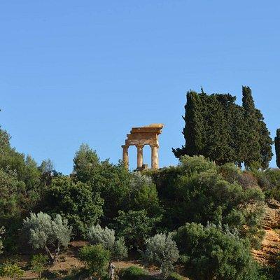 Uno dei panorami più belli della Valle dei Templi! Il Giardino della Kolymbethra con sullo sfondo il tempio dei Dioscuri.