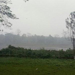 Jeypore rainforest and Dihing river