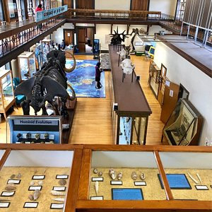The small but mighty Rutgers Geology Museum.