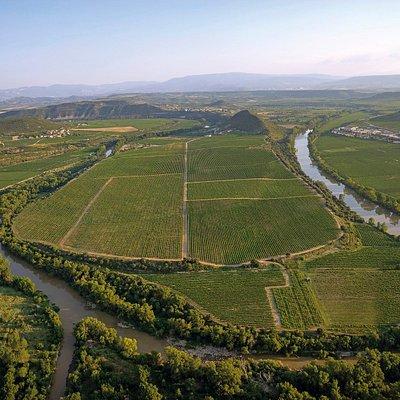 Viña Lanciano es el nombre de este espectacular enclave de 72 hectáreas, abrazado por un meandro del río Ebro, en el límite natural de Rioja Alta y Rioja Alavesa. Una ubicación privilegiada, al abrigo de la Sierra de Cantabria, que favorece un microclima en cada una de sus 22 parcelas, en las que respetamos al máximo el equilibrio lógico de la naturaleza mediante una viticultura sostenible.