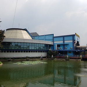 Freshwater Fish Museum and Insect Museum
