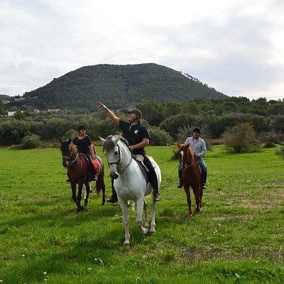 Wer wäre nicht davon begeistert ein authentisches spanisches Pferd zu reiten? Mallorca Horses bietet eine große Auswahl an Reitaktivitäten, darunter die berühmten Reitausflüge,von einem kleinen Abenteuer von drei Stunden bis zu einem großartigen Erlebnis während desganzen Tages. Was unsere Reitausfl+ge am meisten von denden anderer Reitställe unterscheidet, ist, das sie immer mit reinrassigen spanischen und menorquinischen Pferden geführt werden.