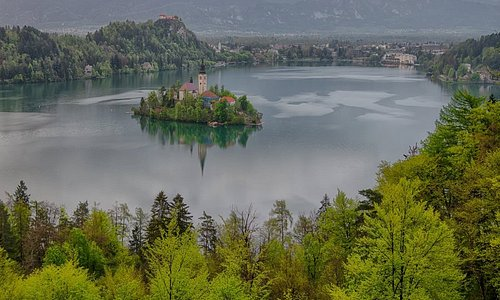 The island in the lake of Bled