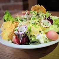 Salát...(listové saláty, ředkvička nakyselo, sýrové oplatky, cottage, semínka, výhonky)