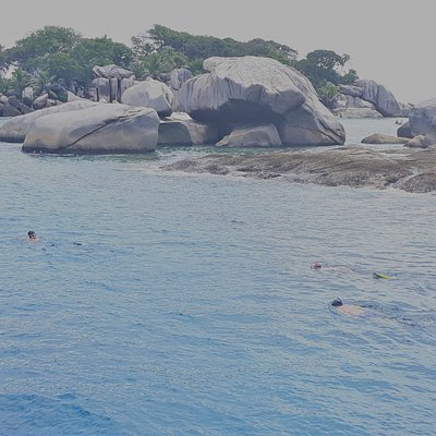 Guests snorkeling around Cocos Islet. Possible with the full-day charter to Praslin / La Digue tour.