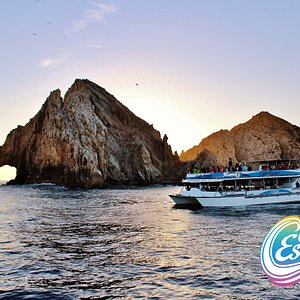 Check out the boat Cabo Escape tours we provide.