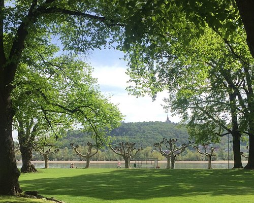 In the park, looking toward the Rhine