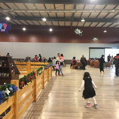 Has a great salt water aquarium for families with young children, even for adults it is fun. They sell shrimps, soft drinks and coffee made by the KingCar group on site. There's an indoor play area for 5 and under kids. Easy parking in the front lot.