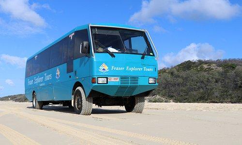 Custom-built, 4WD coaches.