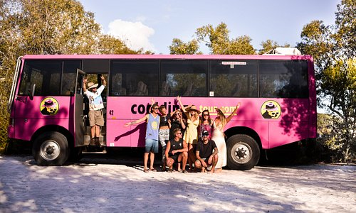 Cool Dingo Tours - One epic Fraser Island adventure, for 18-35's