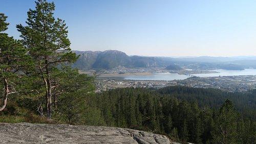 Utsikt mot Namsos fra Svartfjellet