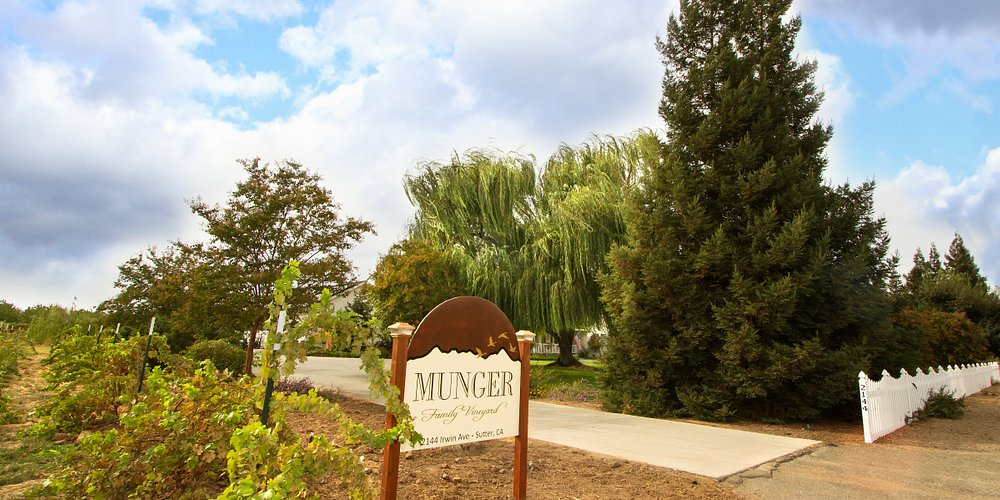 Munger Family Vineyard property