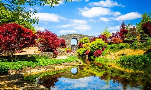 Bluestone bridge Photo by Domino Houlbrook-Cove Photography