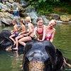 Stelaran Holidays Tours & Travels
