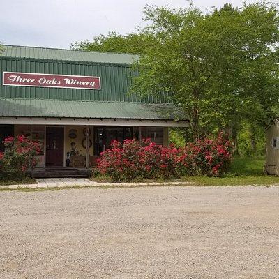 Three Oaks Winery, Vernon FL