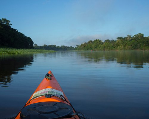 Pacaya Samiria Amazonas - Perú