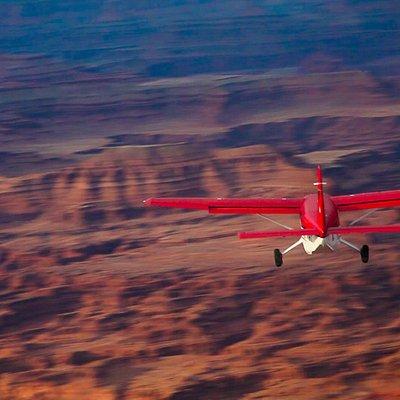 Kodiak In Flight