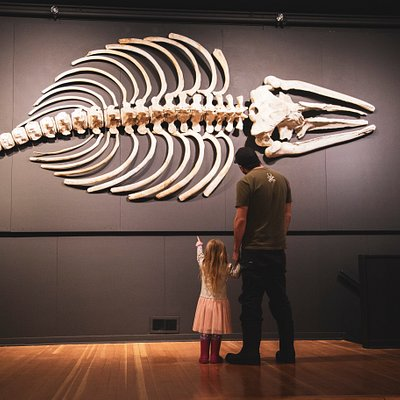 A young girl and her dad enjoying the sights at the Hand of Man Museum.