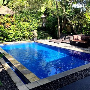 Daytime view of pool area