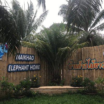 Elefant paradies